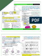 P-02-AMEBIASIS-R3.pdf
