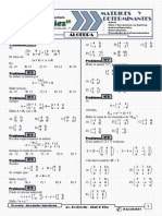 Matrices y Determinantea Practica N°1.pdf