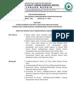 Sk Dir Komite Pmkp Rscb Edit