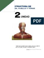 Segunda Unidad Anatomía