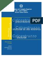 STC LineeGuidaCLS 2003