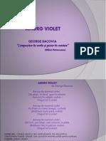 Amurg Violet
