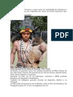 Um Pouco Sobre Os Guaranis, Kaingang e Panará