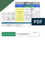 Formato PIPOC (1)