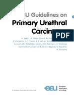 EAU Guidelines on Primary Urethral Carcinoma 2019.pdf