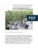 Leyes Para El Negocio de La Marihuana en Colombia