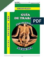 Temas de Anatomía Humana II Bimestre Para 5to Grado