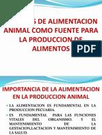 alimentacion animales.pptx