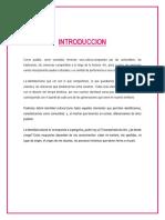 INTRODUCCIOn-a-identidad.docx