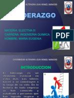 PRESENTACION DE LIDERAZGO...pptx