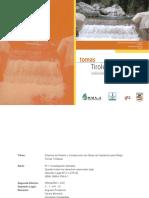 194599870-Toma-Tirolesa-Obra-de-Captacion.pdf