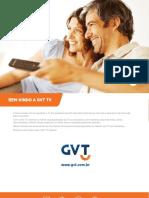 Gvt Tv Manual Universal