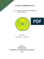 REVIEV JURNAL MIKROBIOLOGI.docx