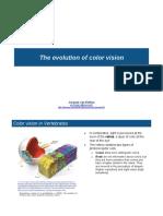 10.Color Vision Slides