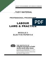 Labour_Laws&_Practice.pdf