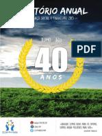 Relatório Anual e Balanço Patrimonial CVM - 2015
