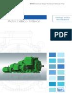 WEG w22 Motor Eletrico Trifasico 50023622 Brochure Portuguese Web