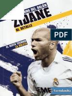 Zidane - Sebastiano Vernazza