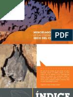 Murciélagos habitantes de las Cuevas del Enclave Seco del Chicamocha (Santander-Colombia)