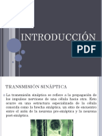 Sinaptica Trans