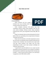 1558504278331_Amber, Batu Mulia Dari Fosil1
