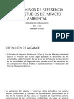 Los Términos de Referencia Para Estudios de Impacto