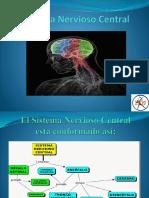Sistema Nervioso Central powerpoint 2.pptx