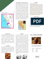 triptico de la cultura paracas