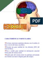 Cerebelo y diencéfalo.pptx