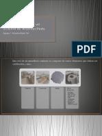 Componentes del Sistema Pluvial