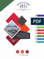 SOP o Guía VBG en Emergencias para Colombia V1 con Anexos