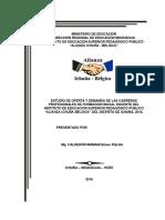 Estudio Oferta y Demanda de Placido Calderon Mamani 2016