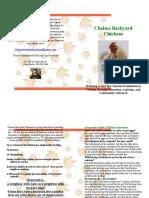Chelsea Backyard Chickens