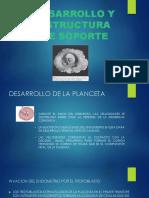 DIAPOSITIVAS OBSTETRICIA-1.pptx