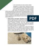 Evaluación Biologia Acuario (1)