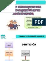 Sesion 1 - Plan Nacional Para Las Personas Adultas Mayores 2013-2017
