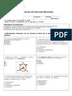 5°año básico Prueba Ciencias Naturales.tema  Célula .2019