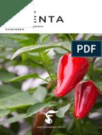 Cultivo da pimenta