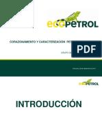 Resumen Petrofísicos Básicos_final