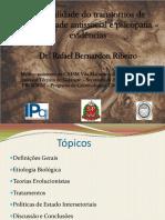 Tratabilidade do Transtorno de Personalidade.pdf