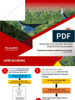 Klhs Rtrw Pelalawan- Uji Publik 1