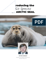 Introducing the Six Species of Arctic Seal