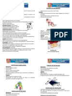 registrocivil.pdf