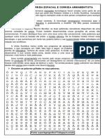 Terceiro Ano 1.pdf