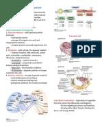 Foundations of Biomolecules