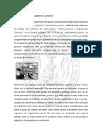 Sociedad y Ordenamiento Juridico Blanca Noriega