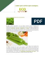Lo que debes saber para cultivar apio ecológico