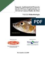 V2C2.1-Hidrobiología EIA SAPET[1]