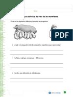 articles-29443_recurso_doc.doc