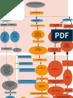 Mapa-conceptual-plan-De-negocio Aliumna Mallerly Astrid Quintero